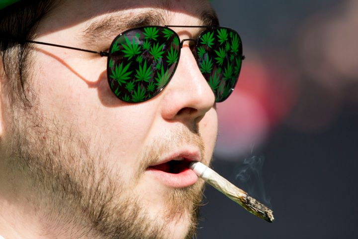 Cannabis activists...