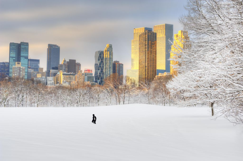 Skyline and Central Park Sheep Meadow in snow