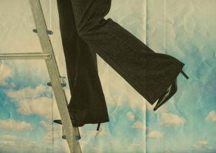 Step up ladder