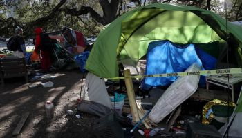 Mosswood Park Homeless Camp Clearing